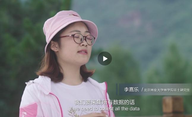 百度AI-北京林业大学同学